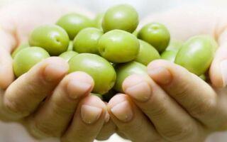 Как правильно выбрать оливки