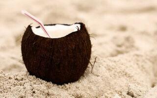Кокосовое молоко польза, калорийность
