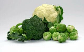 Какими свойствами обладает капуста брокколи