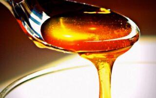Польза пчелиного меда, калорийность