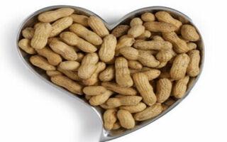 Польза и вред арахиса, калорийность