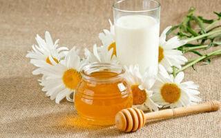 Мёд с молоком польза и вред