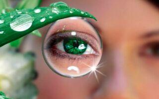 Правильные продукты для глаз и зрения