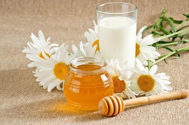 Польза меда с молоком