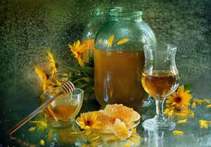 medovuha-svoistva