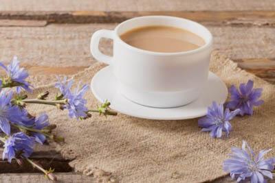 Цикорий для замены кофе